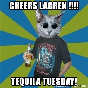 Cat_Angry_Drinker - Cheers Lagren !!!! tequila tuesday!