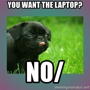 derp - you want the laptop? NO/