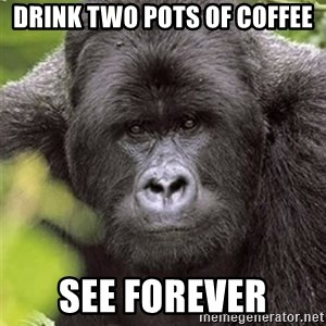 Grad Student Gorilla - drink two pots of coffee see forever