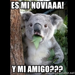 Koala can't believe it - es mi noviaaa! y mi amigo???