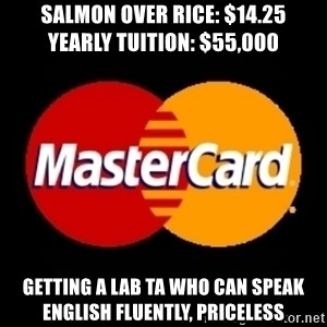 mastercard - SALMON OVER RICE: $14.25          YEARLY TUITION: $55,000 getting a lab TA who can speak english fluently, Priceless