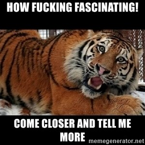 Sarcasm Tiger - HOW fucking fascinating! come closer and tell me more