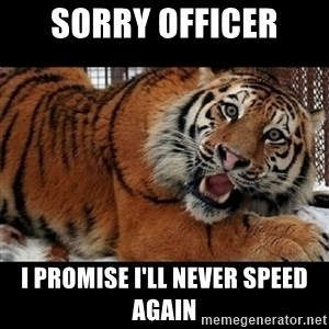 Sarcasm Tiger - sorry officer i promise i'll never speed again
