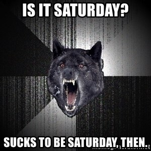Insanity Wolf - IS IT SATURDAY? SUCKS TO BE SATURDAY, THEN.