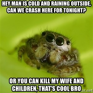 The Spider Bro - hey man is cold and raining outside, can we crash here for tonight? or you can kill my wife and children, that's cool bro