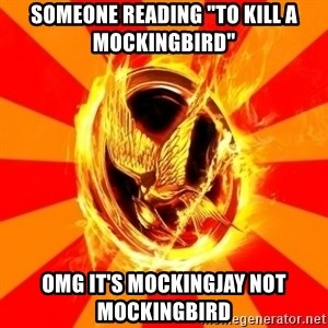 "Typical fan of the hunger games - Someone reading ""to kill a mockingbird"" omg it's mockingjay not mockingbird"