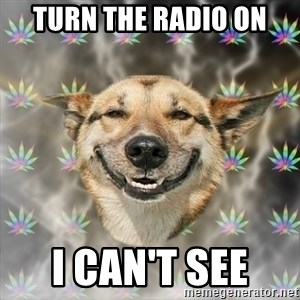 Stoner Dog - Turn THE RADIO ON I can't SEE