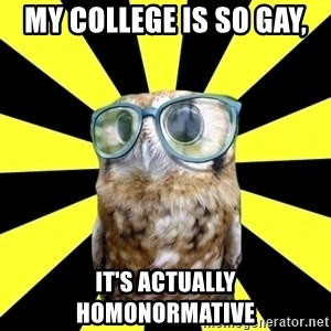 Outspoken Feminist Mawrter - my college is so gay, it's actually homonormative