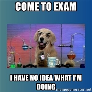 Chemistry Dog - come to exam i have no idea what i'm doing