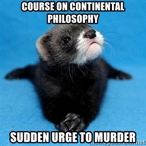 Philosophy Major Ferret - course on continental philosophy sudden urge to murder