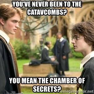 Harry Potter  - yOU'VE NEVER BEEN TO THE CATAVCOMBS? yOU MEAN THE cHAMBER OF SECRETS?