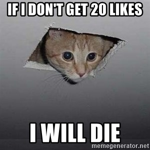 Ceiling cat - if i don't get 20 likes i will die