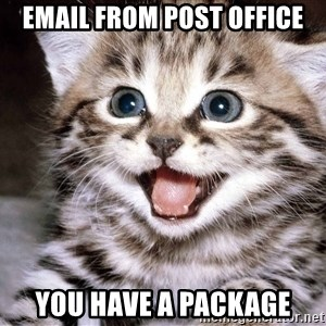HAPPY KITTEN - EMAIL FROM post office you have a package