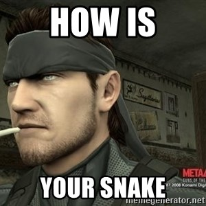 Solid Snake - how is your snake