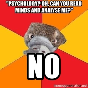 "Psychology Student Platypus - ""Psychology? Oh, can you read minds and analyse me?"" no"