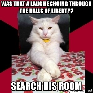 Evil Cat Final Boss - Was that a laugh echoing through the halls of liberty? SEarch his room