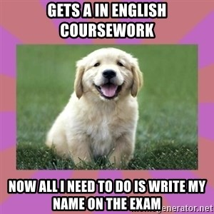a level puppy - Gets a in english coursework now all i need to do is write my name on the exam