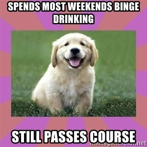 a level puppy - spends most weekends binge drinking still passes course