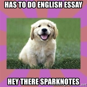 a level puppy - has to do english essay hey there sparknotes