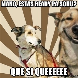 Stoner dogs concerned friend - mano, estas ready pa SOHU? que si queeeeee