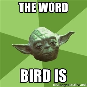 Advice Yoda Gives - The word bird is