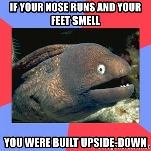 Bad Joke Eels - if your nose runs and your feet smell you were built upside-down