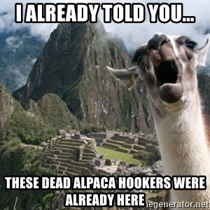Bossy the Llama - I already told you... These dead alpaca hookers were already here
