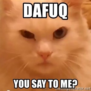 GipCat - Dafuq You say to me?