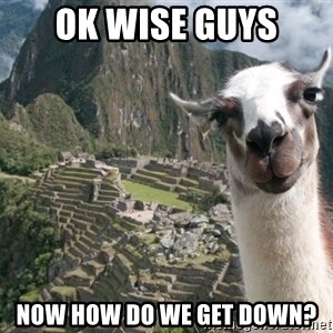 Bossy the Llama - OK Wise Guys Now how do we get down?