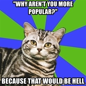 """Introvert Cat - """"Why aren't you more Popular?"""" Because that would be hell"""