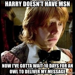 Magic World Problems - harry doesn't have msn now i've gotta wait 10 days for an owl to deliver my message