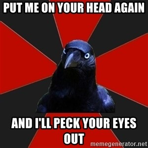 Gothiccrow - put me on your head again and I'll peck your eyes out
