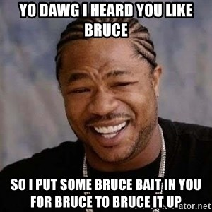 Yo Dawg - yo dawg i heard you like bruce so i put some bruce bait in you for bruce to bruce it up