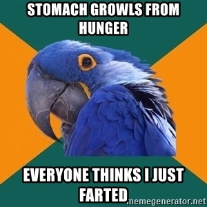 Paranoid Parrot - stomach growls from hunger everyone thinks i just farted