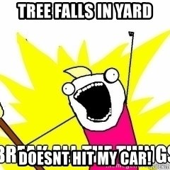 Break All The Things - Tree falls in yard  doesnt hit my car!