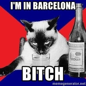 Alco-cat - I'm IN BARCELONA BITCH