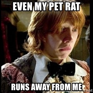 Magic World Problems - even my pet rat runs away from me