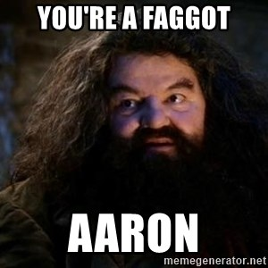 Yer A Wizard Harry Hagrid - You're a faggot aaron