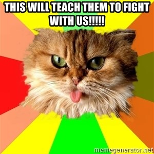 dangerous cat - This will teach them to fight with us!!!!!