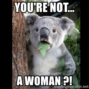 Koala can't believe it - You're not... a woman ?!