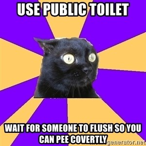 Anxiety Cat - USE PUBLIC TOILET WAIT FOR SOMEone TO FLUSH SO YOU CAN PEE COVERTLY
