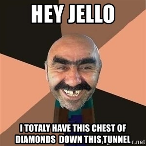 minecraft_dyshanbe - hey jello i totaly have this chest of diamonds  down this tunnel
