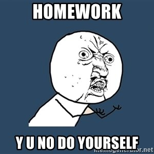 Y U No - Homework y u no do yourself