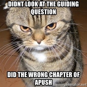 angry cat 2 - Didnt look at the guiding question did the wrong chapter of apush