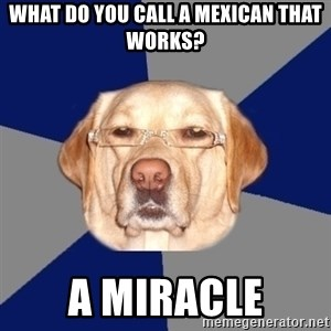 Racist Dawg - What do you call a mexican that works? a miracle