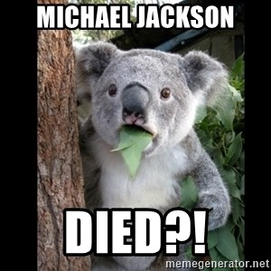 Koala can't believe it - michael jackson died?!