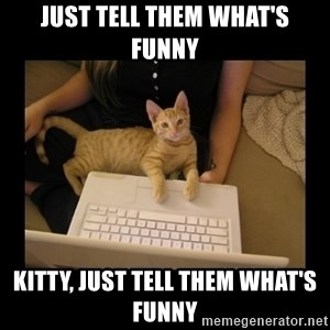 Freelance Writer Kitten - just tell them what's funny kitty, just tell them what's funny