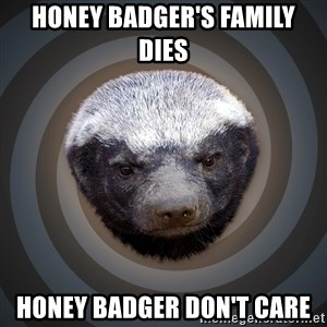 Fearless Honeybadger - honey badger's family dies Honey Badger Don't care