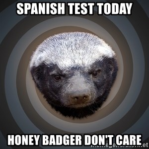 Fearless Honeybadger - spanish test today honey badger don't care