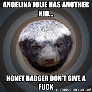 Fearless Honeybadger - angelina jolie has another kid... honey badger don't give a fuck